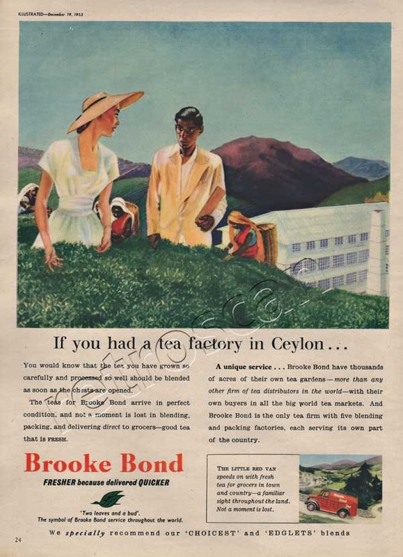 1953 Brooke Bond Tea ad