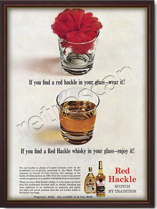1964 Red Hackle Scotch Whiskey - framed preview