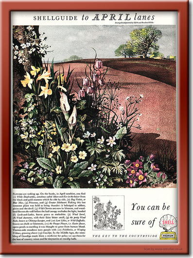 1954 Shell Guide to April lanes - framed preview retro