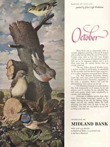 1964 Midland Bank October Birds