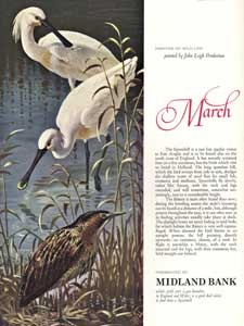 1964 Midland Bank March Birds