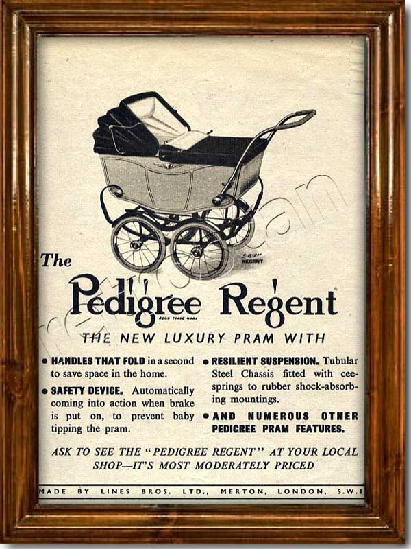Pedigree Regent Prams  Vintage Ad