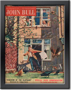 55 April John Bull Vintage Magazine Back Garden Panic  - framed example