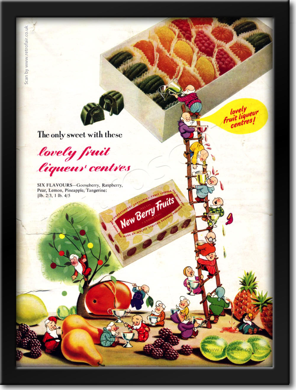 vintage 1952 New Berry Fruits