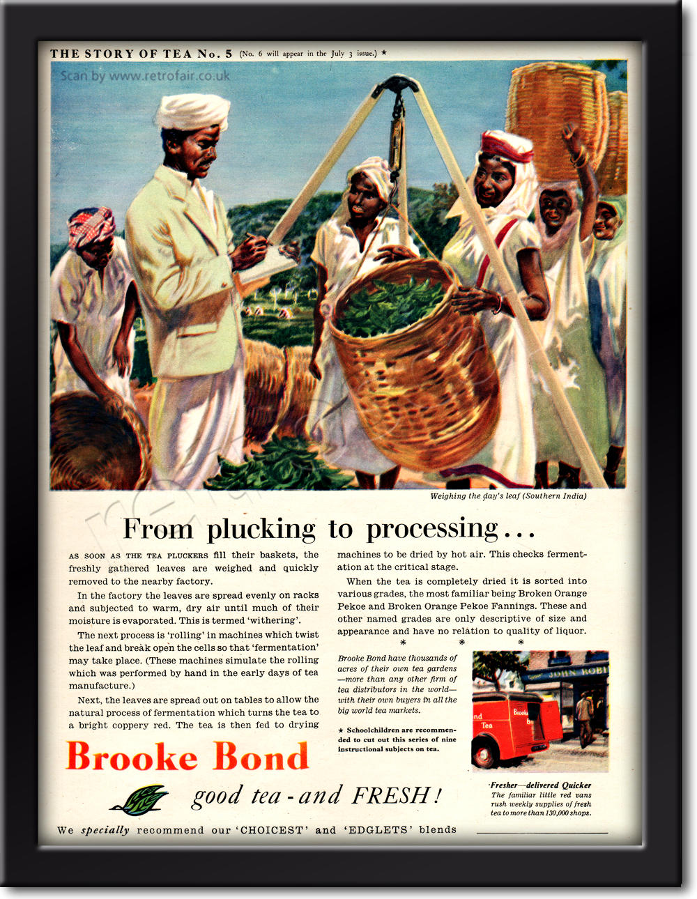 vintage 1954 Brooke Bond Story OF Tea No. 5 advert