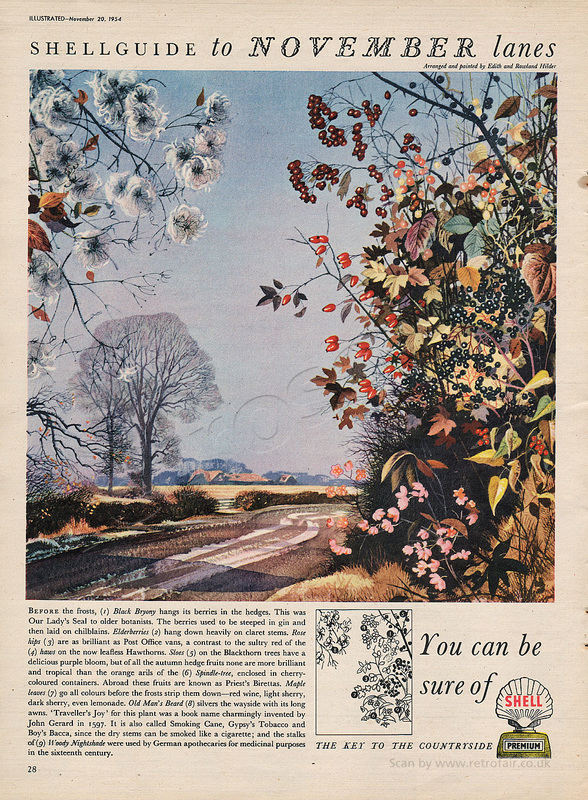 1954 Shell Guide To Lanes - November - unframed vintage ad