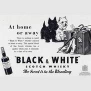 1952 Black & White Scotch Whisky