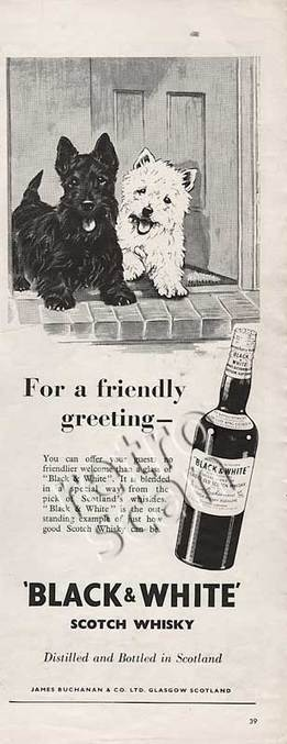 Retro Black & White Scotch Whisky  advert