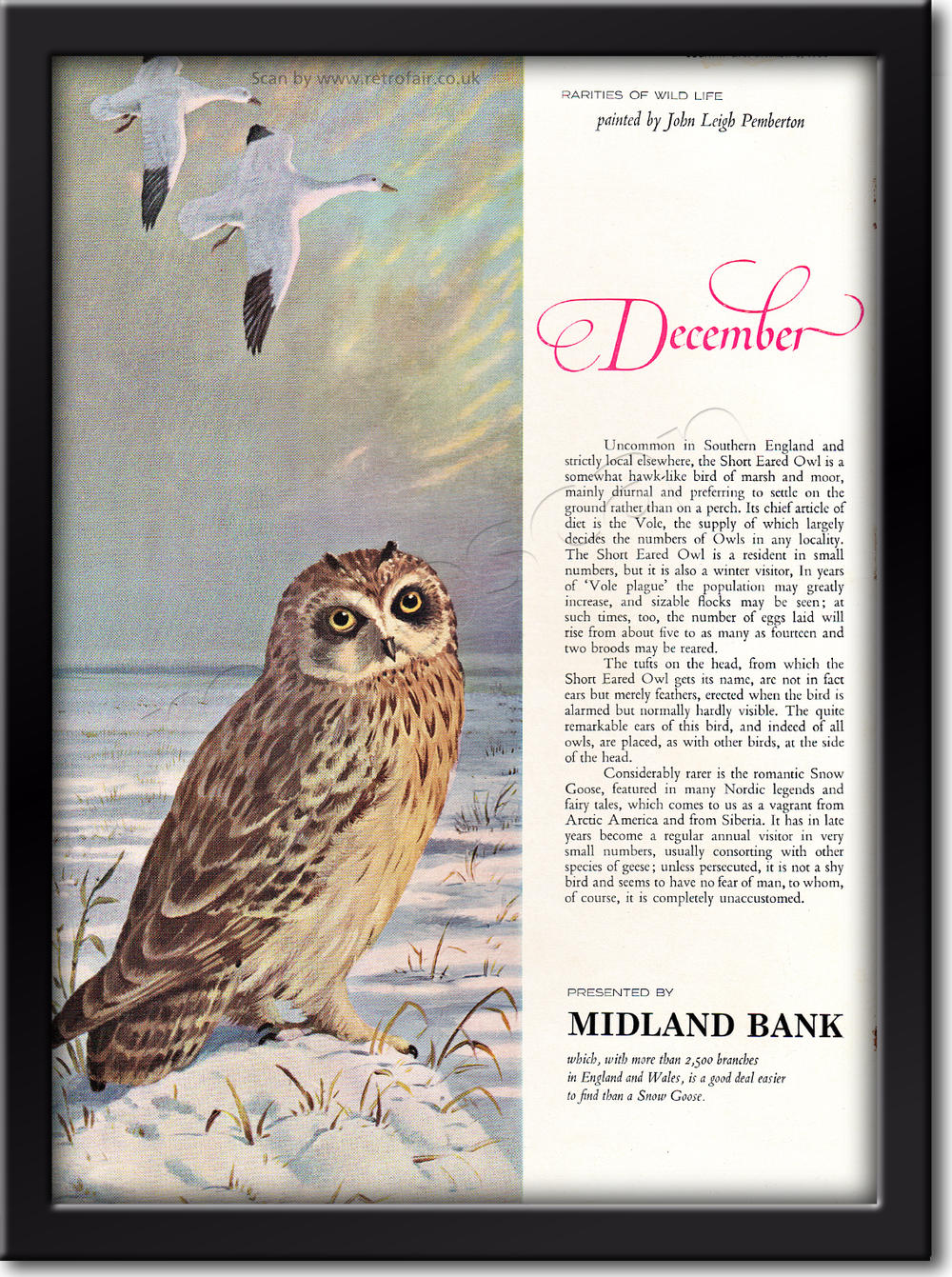 1964 vintage Midland Bank - December advert