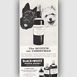 1959 ​Black & White Whisky vintage ad