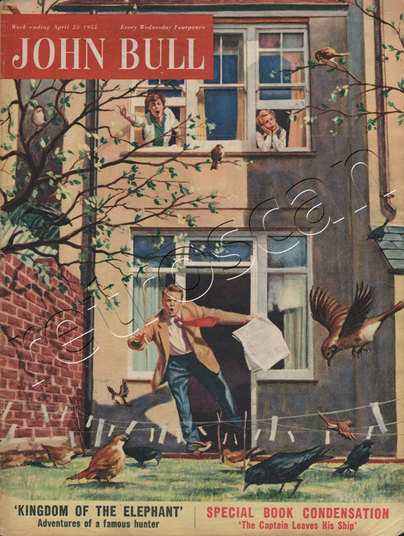 1955 April John Bull Vintage Magazine Back Garden Panic  - unframed