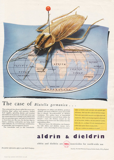 1955 Shell Chemicals - unframed vintage ad