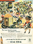 1951 Kia-Ora Spanish Orange picking retro ad